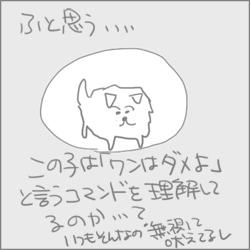 160915c_edited-1.jpg