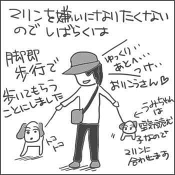 161125d_edited-1.jpg