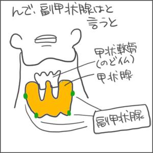 170427甲状腺02_edited-1.jpg
