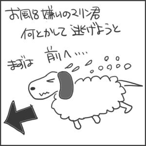 170813a_edited-1.jpg