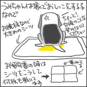 170906a_edited-1.jpg