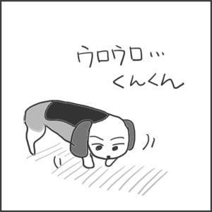 171103復活うみちゃんa_edited-1.jpg