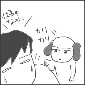 171103復活うみちゃんc_edited-1.jpg