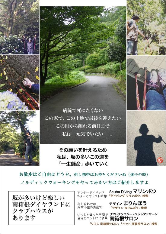 180613南箱根ダイヤランド坂道.jpg