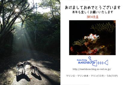 2014年賀状so-net.jpg