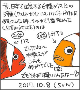 171008トウアカとハマ_edited-1.jpg