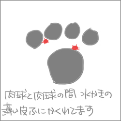 160910c_edited-1.jpg