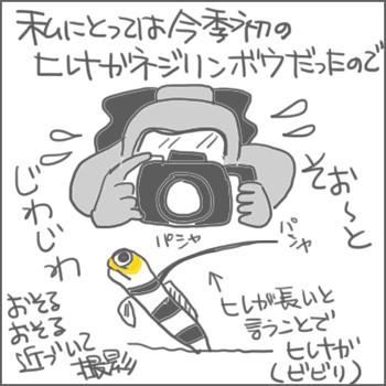 161106a_edited-1.jpg
