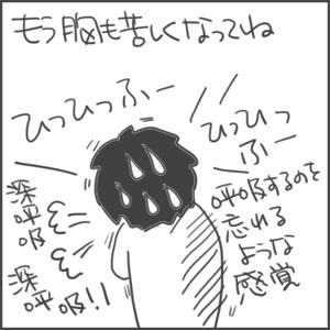 170827b_edited-1.jpg