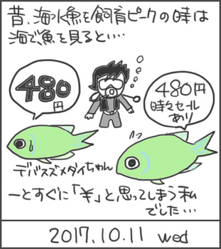 171011デバスズメダイ.jpg