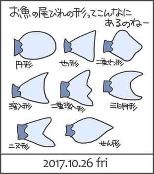 171026尾びれいっぱい.jpg